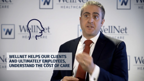 What Does WellNet Do?